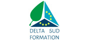 Delta Sud Formation